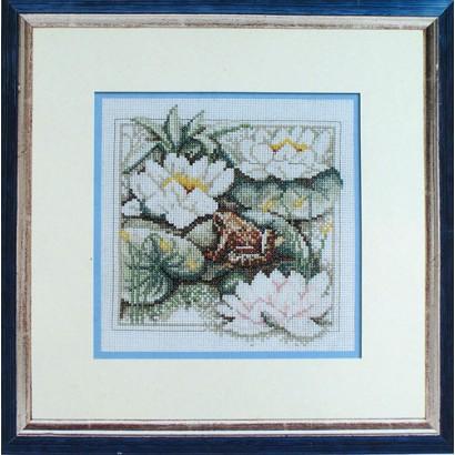 Fleurs et grenouille