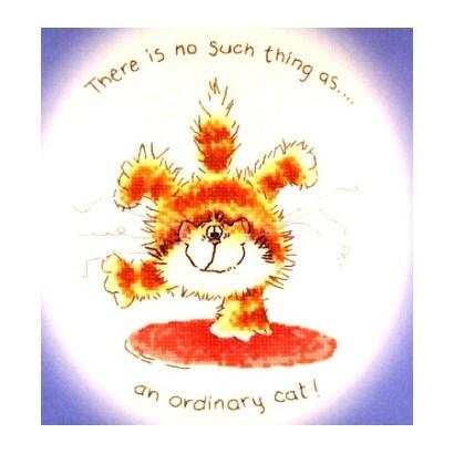 An ordinary cat?