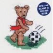 Football Teddy
